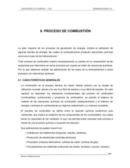 9. PROCESO DE COMBUSTIÓN