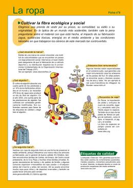Ficha 8 : La ropa
