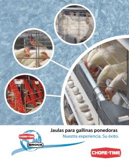 Jaulas para gallinas ponedoras - Chore
