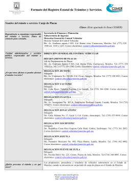 Formato del Registro Estatal de Trámites y Servicios.