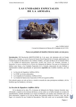 Las unidades especiales de la Armada (Col. J. Yáñez)