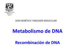 Recombinación de DNA - Genética y Biología Molecular