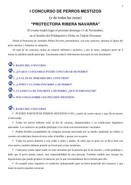 I CONCURSO DE PERROS MESTIZOS