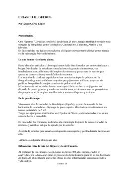 CRIANDO JILGUEROS - Canaricultura Color