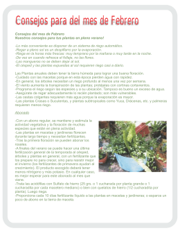 Febrero - Ciudad Jardín