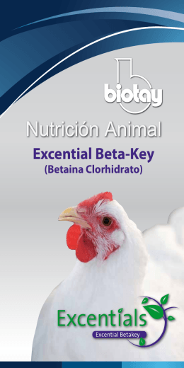 Excential Beta-Key