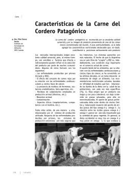 Características de la Carne del Cordero Patagónico