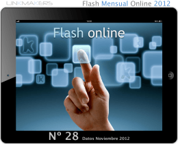 Flash Nielsen Marketing Digital Noviembre 2012
