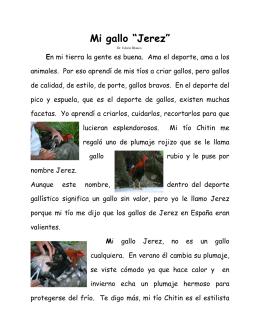 Mi Gallo Jerez - Dr. Edwin Blanco