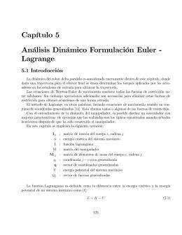 Capítulo 5 Análisis Dinámico Formulación Euler - Lagrange