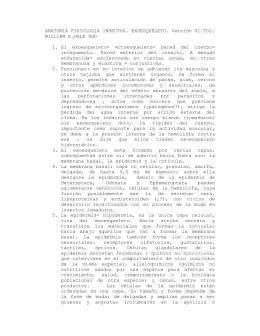 anatomía fisiología insectos. exoesqueleto. versión 01.t02. william e