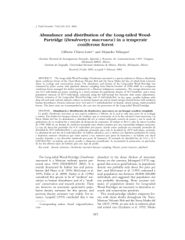 Abundance and distribution of the Long-tailed Wood