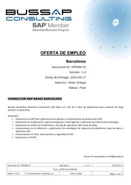 ver pdf. - Bussap Consulting