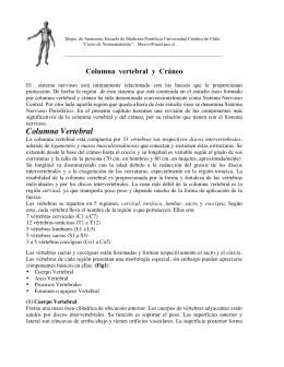 Columna Vertebral - Escuela de Medicina