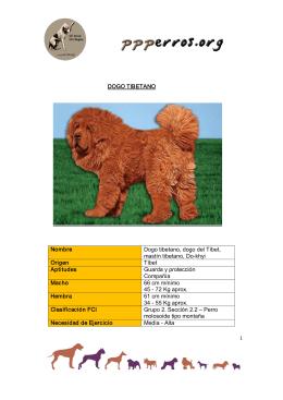 DOGO TIBETANO Nombre Dogo tibetano, dogo del Tíbet
