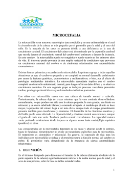 Tema 7: Microcefalia