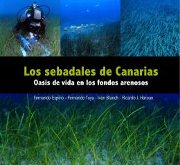 Los sebadales de Canarias - Cabildo de Fuerteventura