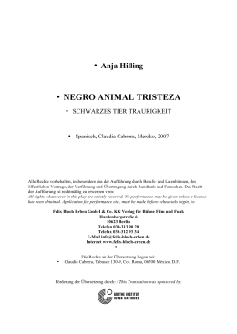 • NEGRO ANIMAL TRISTEZA - festival de dramaturgia europea