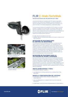 FLIR C-Walk/SafeWalk