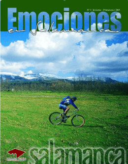 descargar pdf - Diputación de Salamanca