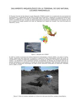 El Proyecto Terminal de Gas Natural Licuado Manzanillo