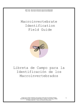 Guia Macroinvertebrados