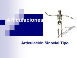 Articulación _Sinovial