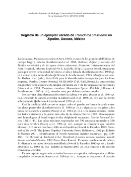 Registro de un ejemplar varado de Pseudorca crassidens en
