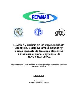 Revisión y análisis de las experiencias de Argentina, Brasil