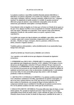 """PLANTAS ACUATICAS - Aula de Naturaleza """"El aguadero"""""""