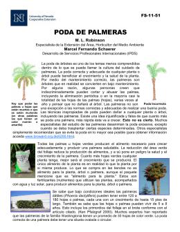 Poda de Palmeras - University of Nevada Cooperative Extension