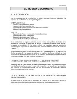 EL MUSEO GEOMINERO - Instituto Geológico y Minero de España