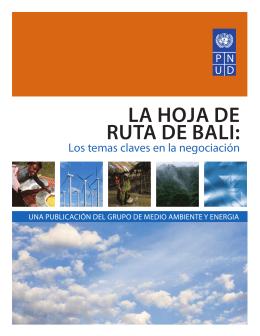LA HOJA DE RUTA DE BALI: