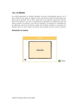 10.2. LA MEIOSIS Animación: La meiosis