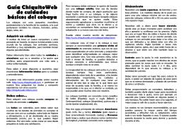 Guía ChiquitoWeb de cuidados básicos del cobaya