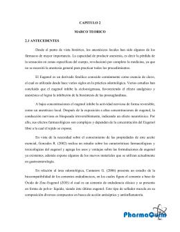 CAPITULO 2 MARCO TEORICO 2.1 ANTECEDENTES Desde el