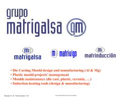 Company Fact Sheet - Vigo