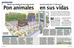 tienda de mascotas - Portal del Emprendedor de Paterna