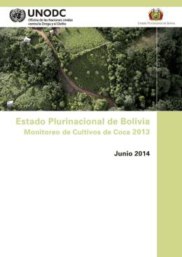 Informe Monitoreo Cultivo de Coca 2013