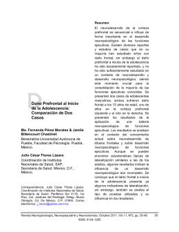 Daño Prefrontal al Inicio - Grupo de Neurociencias de Antioquia