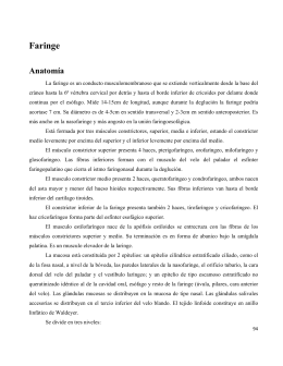 Módulo de Faringe