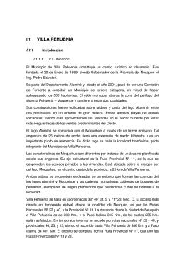 Anexo- Villa Pehuenia-Alumine