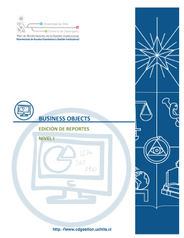 BUSINESS OBJECTS - Universidad de Chile
