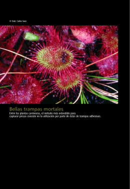 Plantas carnívoras en Cantabria