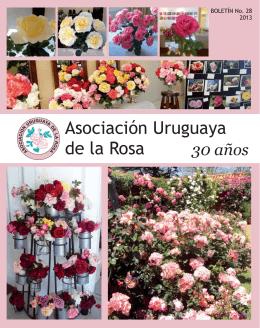 boletín anual 2013 - Asociación Uruguaya de la Rosa