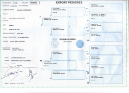 export pedigree
