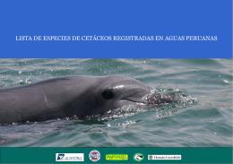 Lista de especies de cetáceos registradas en aguas peruanas