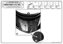HONDA FORZA X/EX 250cc `08