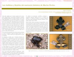 Los Anfibios y Reptiles del santuario histórico de Machu Picchu.
