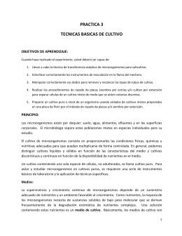 PRACTICA 3 TECNICAS BASICAS DE CULTIVO